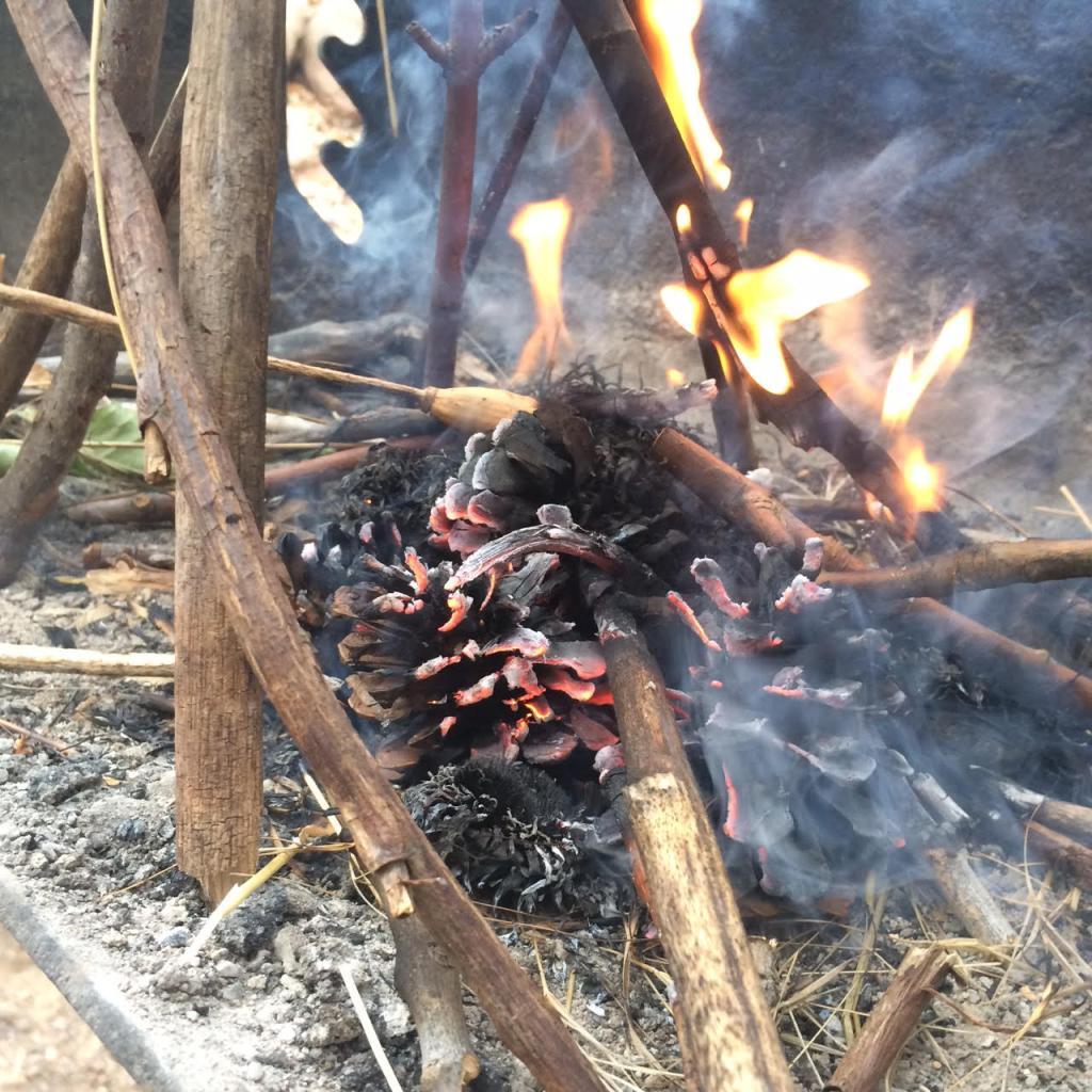 burncone