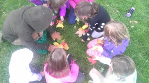 Everyone did a great job at collecting the mystery leaves!