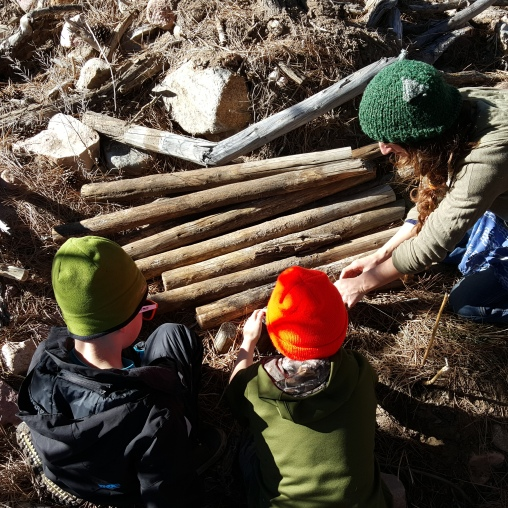 Quinn, Wyatt and Rosie pulling up old Teepee poles