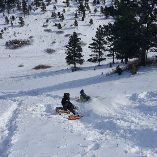 Epic Sled Run!