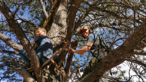 Quinn and Wendy tying our ridgepoles to out anchor Ponderosa Pine!