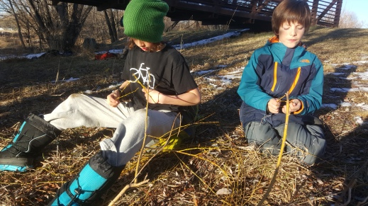 "Making ""Nature Frisbees"" out of Willow"