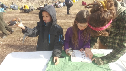 Gabriel gets inside the mind of the Kestrel while Andra and Rosie learn the difference between a Saw Whet and Pygmy Owl
